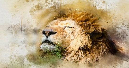 獅子座 獅子座
